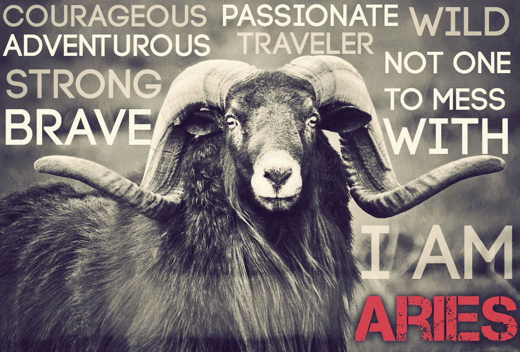 aries zodiac ram